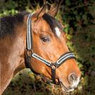 Licol Horseware Diamante